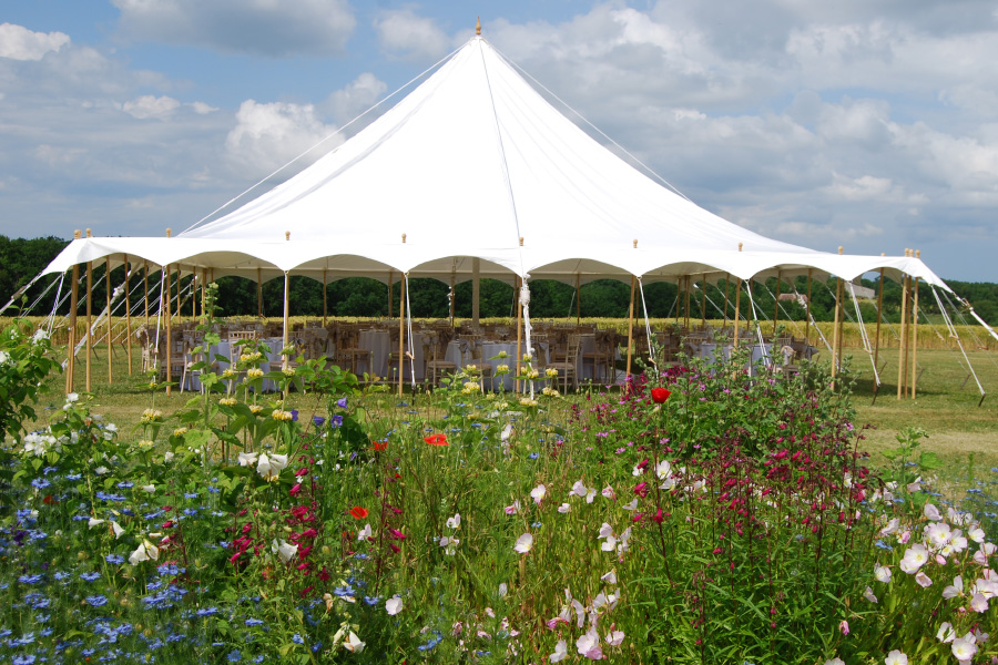 Traditional Marquee in flower meadow setting